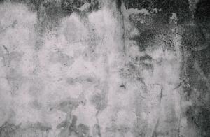 ניקוי עובש בקירות בביתר עילית