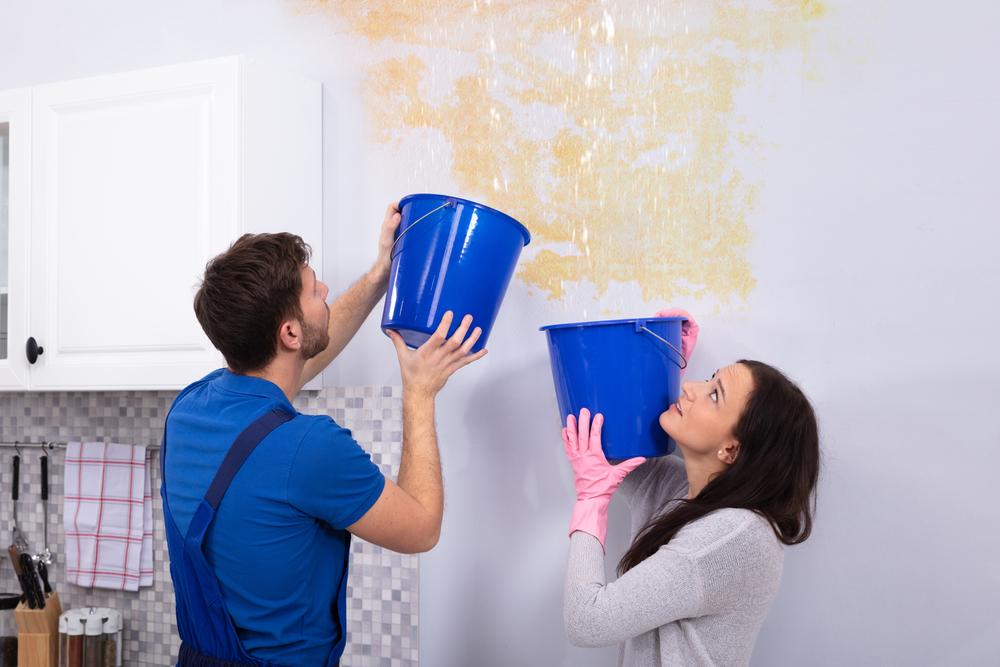 מדריך לשיקום נזקי מים