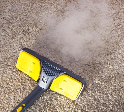 ניקוי שטיחים במשרדים – למה זה חשוב וכיצד מנקים?